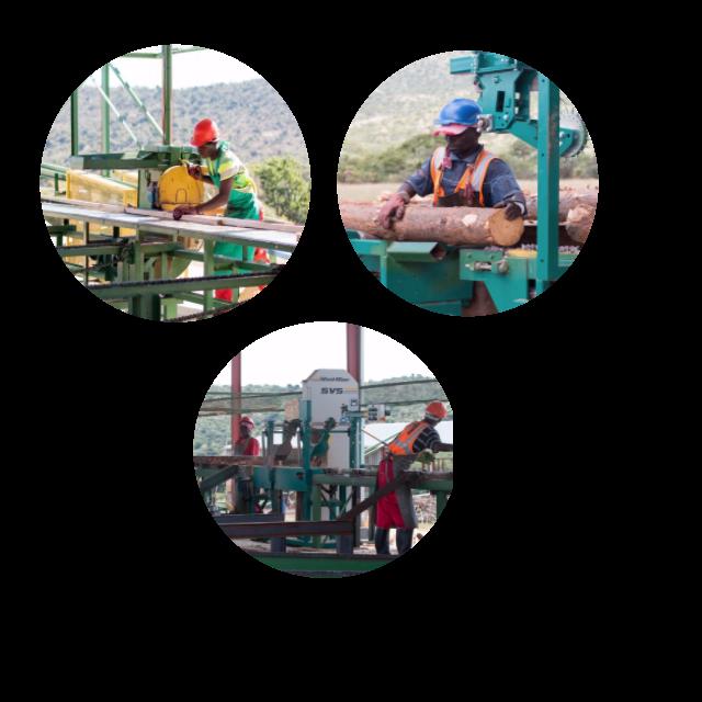 Kwa Thabeng Timbers PTY LTD